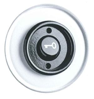 Wipptaster Türöffner, Unterputz-Schaltersystem Glas mit Bakelit schwarz