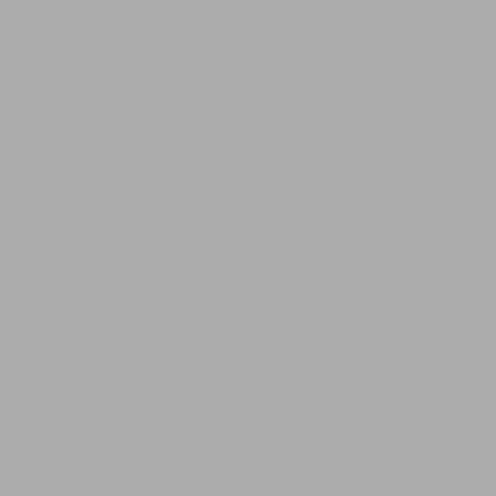 6.0023.21  Codicer Retrofliese / Feinsteinzeug BASIC SILVER